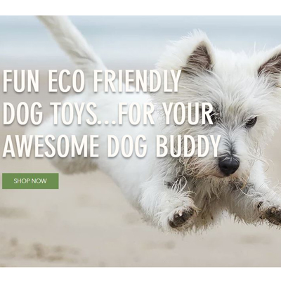 Dog Buddy Toys